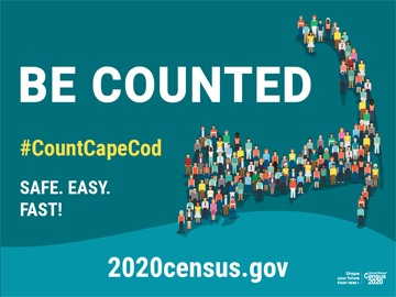 Census Be Counted Small